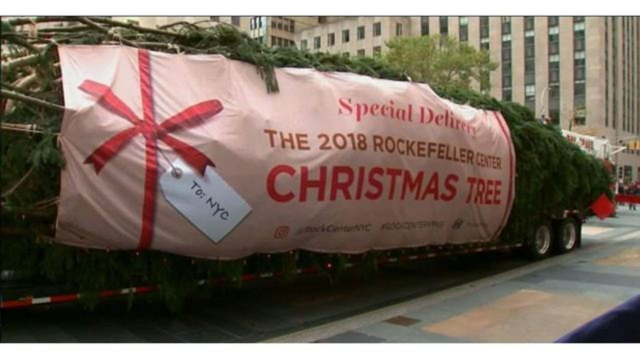The Rockefeller Center Christmas tree has arrived in NYC