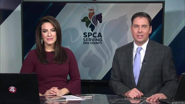 15th annual SPCA serving Erie County radiothon