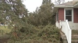 Wind storm is over, what is covered by insurance?