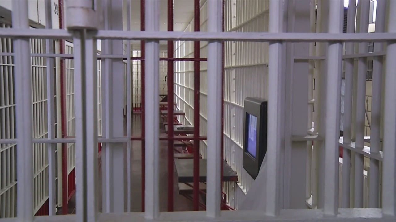 wrongful death suit brought by family of inmate who hanged